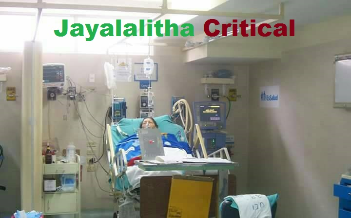 Is Jayalalithaa dead or alive? Health Condition of TN CM [Live News]