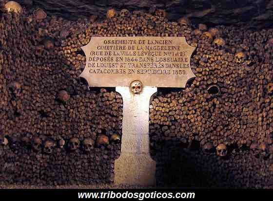 aviso,caveira,cemiterio,ossos,cranio,bizaro