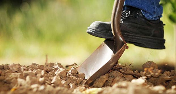 Οι προϋποθέσεις για τη συμμετοχή στο πρόγραμμα «Εγκατάσταση Νέων Γεωργών»