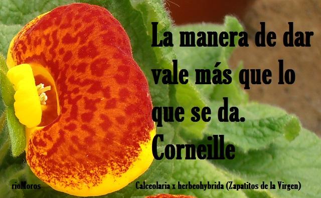 La manera de dar vale más que lo que se da Corneille