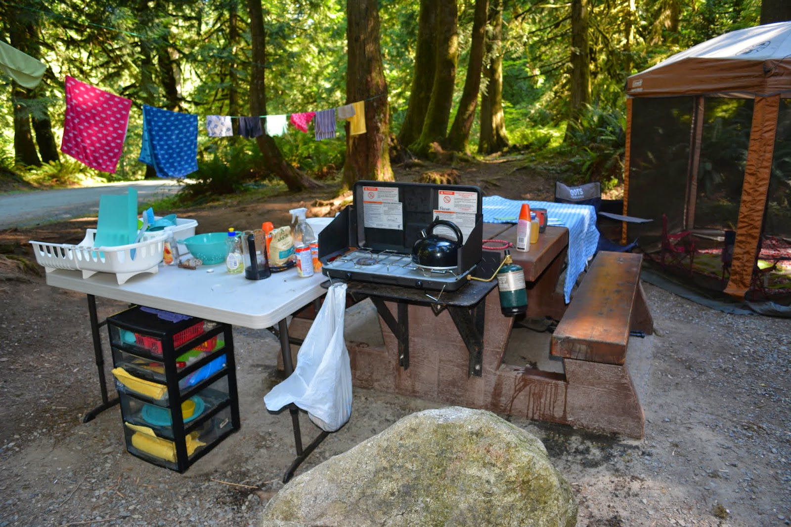 Ladybug 39 s landing camping kitchen - Kitchen set up ideas ...