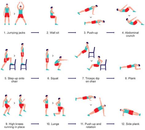 beginner bodybuilding programs complete program of 12