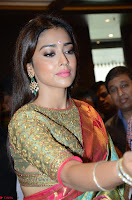 Shriya Saran Looks Stunning in Silk Saree at VRK Silk Showroom Launch Secundrabad ~  Exclusive 178.JPG