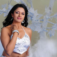 Vimala Raman Hot Photo Shoot