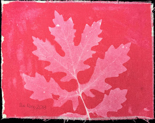 Solarfast prints_Sue Reno_Image 10