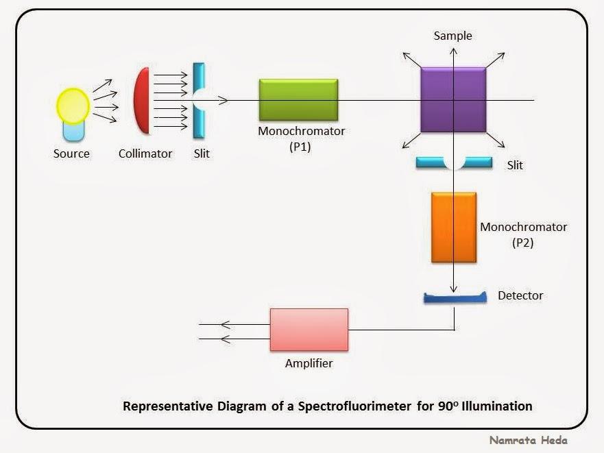 B For Biology Spectrophotometry Spectrofluorimetry Part 1