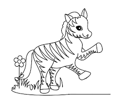 Baby Zebras And Flower Coloring Pages