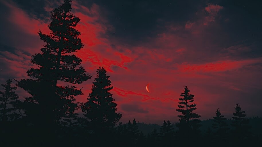Moon, Red Night, Sky, Forest, Scenery, 4K, #6.2202