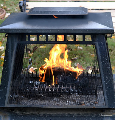 Duraflame Firelogs Reviewed - Wood Alternatives for Fireplace