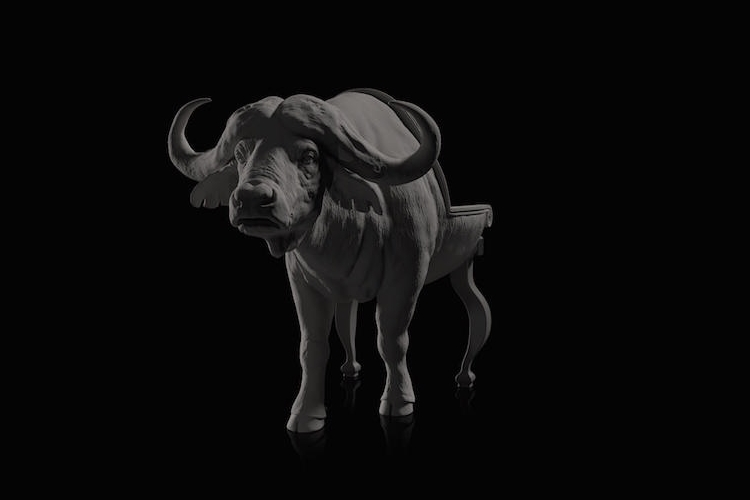 15-Buffalo-Maximo-Riera-Animal-Shaped-Furniture-Chairs-and-Sofas-www-designstack-co