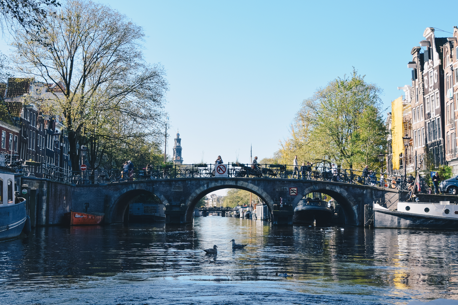 24 Hours in Amsterdam Noord: Top 5 Things to See & Do