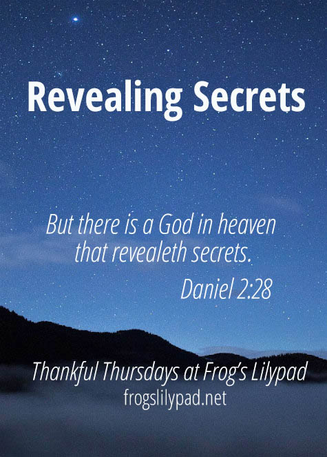 Frog's Lilypad: Revealing Secrets - We have a God in heaven who will reveal secrets.