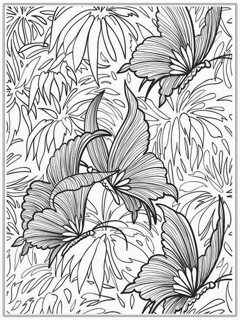 Adult Coloring Pages Butterfly  Realistic Coloring Pages-5412