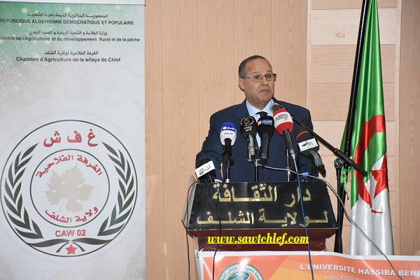 وزير الفلاحة من الشلف : رداءة نوعية الحمضيات ساهمت في خفض نسبة التصدير للخارج