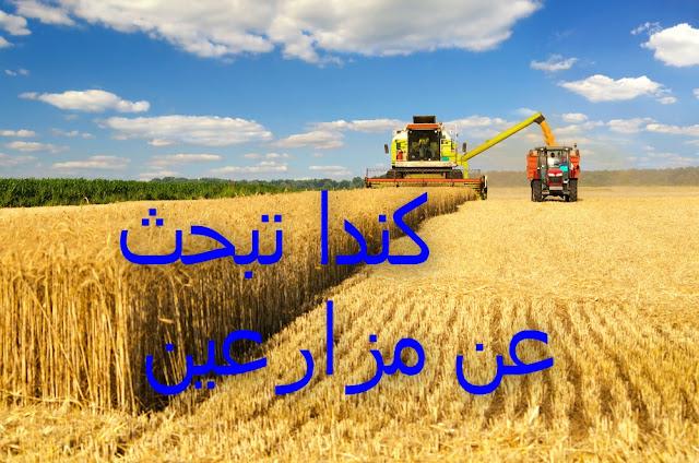 العمل في الزراعة في كندا