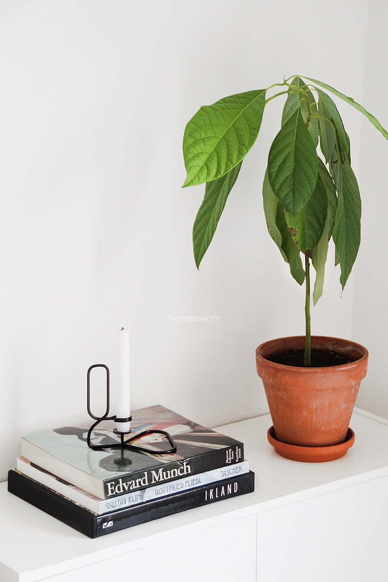 Black and White sideboard decoration with green plant, coffee table books and HAY Lup candleholder