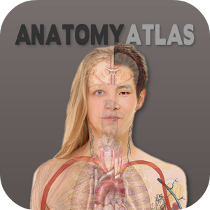 Human%2BAnatomy%2BAtlas Human Anatomy Atlas 2017 v2017.1.39 APK [Latest] Apps