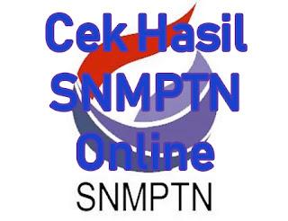 Hore Lulus. Ini Nih Cara Cek Hasil Pengumuman SNMPTN Secara Online