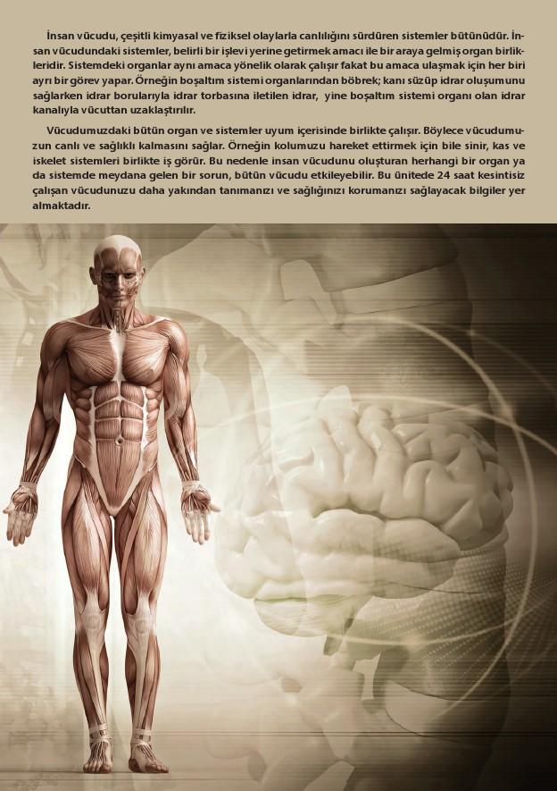 11. Sınıf Biyoloji Ders Kitabı Cevapları Köke Yayınları Sayfa 15
