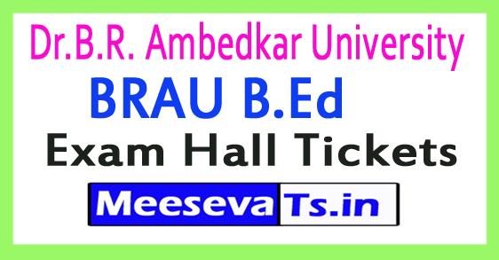 Dr.B.R. Ambedkar University BRAU B.Ed Exam Hall Tickets