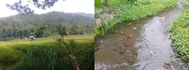 Wisata Air Krabyakan, Malang, pretty-moody.com