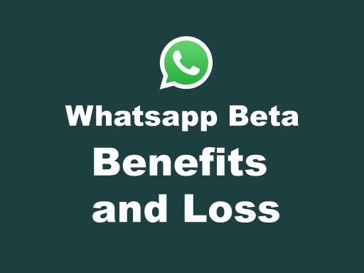 What is the Benefits and Loss of Whatsapp Beta