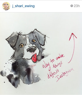 border collie watercolor painting instagram j shari ewing