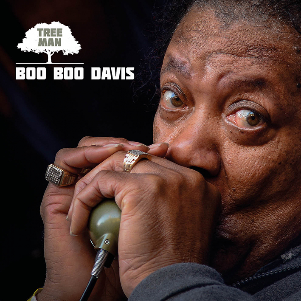 """Résultat de recherche d'images pour """"BOO BOO DAVIS CD TREE MAN"""""""