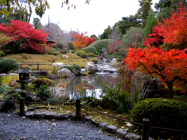 Autumn Exclusive Tour of Taizo-in Zen Buddhist Temple, Myoushinji, Hanazono, Kyoto