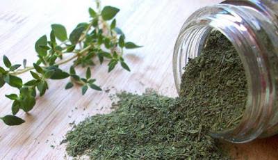 Thyme Menyembuhkan Batuk Dengan Cepat