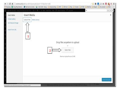i hướng dẫn để bạn tối ưu hóa hình ảnh wordpress một cách đơn giản, dễ hiểu nhất!