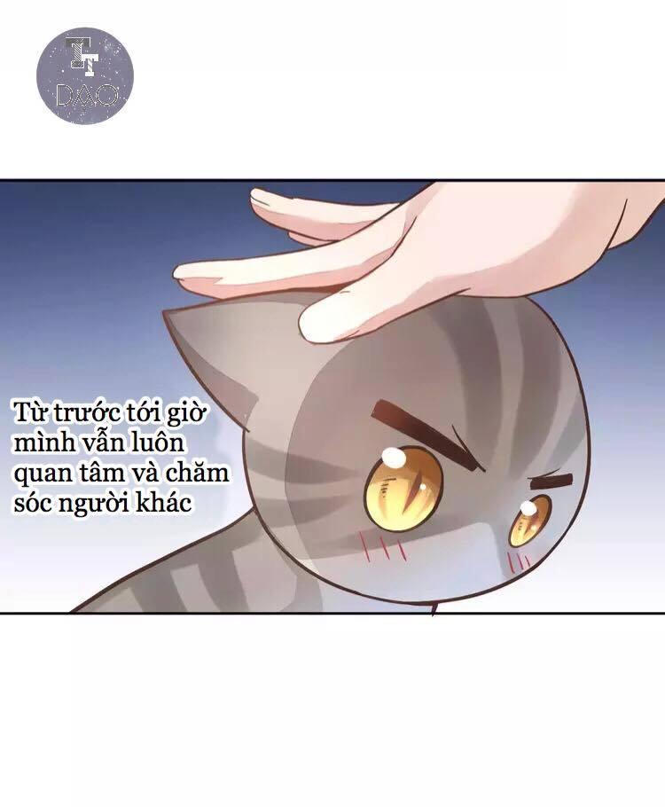 Dưới Móng Vuốt Mèo - Chap 19