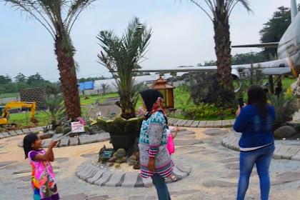 Wisata Petik Kurma Pasuruan Serasa di Timur Tengah