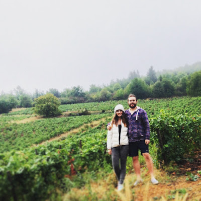 Grape picking in France - Awesome Tips for Budget Travel in Europe