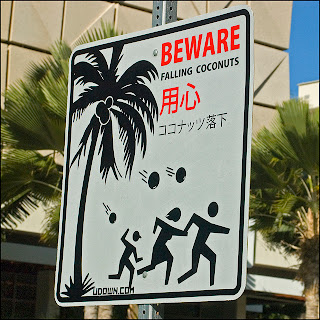 beware falling coconuts