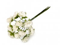 https://scrapkowo.pl/shop,kwiaty-na-druciku-10-15mm-biale-12-szt,8222.html