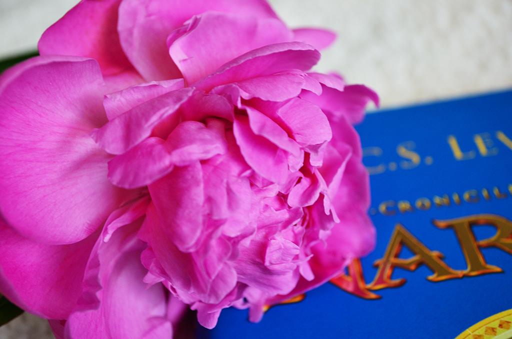 recenzie carte cronicile din narnia calatorie cu zori de zi editura arthur
