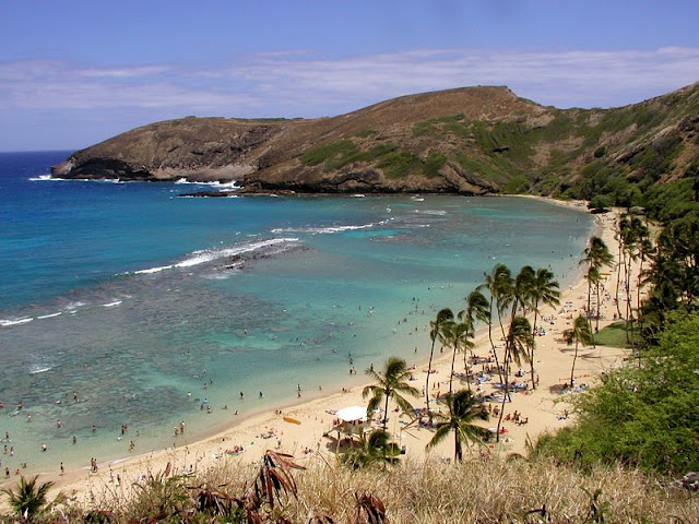 beautiful scenery of beach and mountain at Hawaii Beach from above