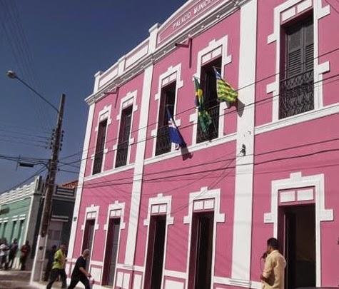 Resultado de imagem para palácio casa rosada pi