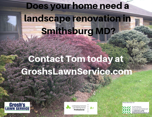 Lawn Mowing Service Landscaping Groshs Lawn Service Hagerstown