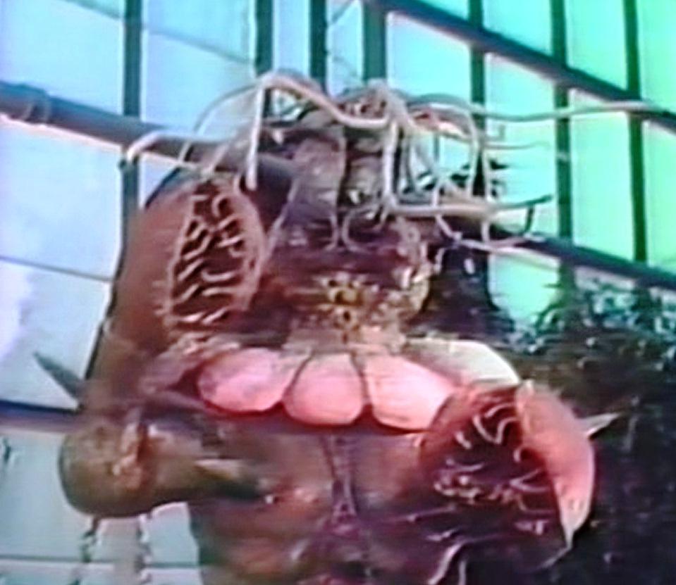 Zisi Emporium for B Movies: Venus Flytrap, The Mad Botanist of Japan