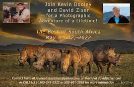 Join Our 2022 Photo Safari in Africa May 3 - 12, 2022