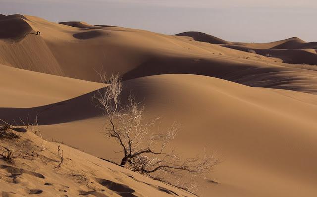 Sand dunes of Maranjab Desert.