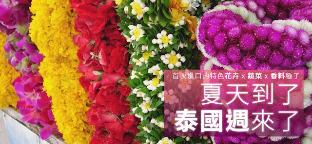 了解更多>夏天到了.泰國週來了專題:耐熱萵苣&泰國香料種子