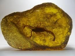 Cerita Tentang Batu Amber