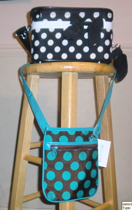 A GAL NEEDS   : SassySteals Satchel and Make-up Bag Review