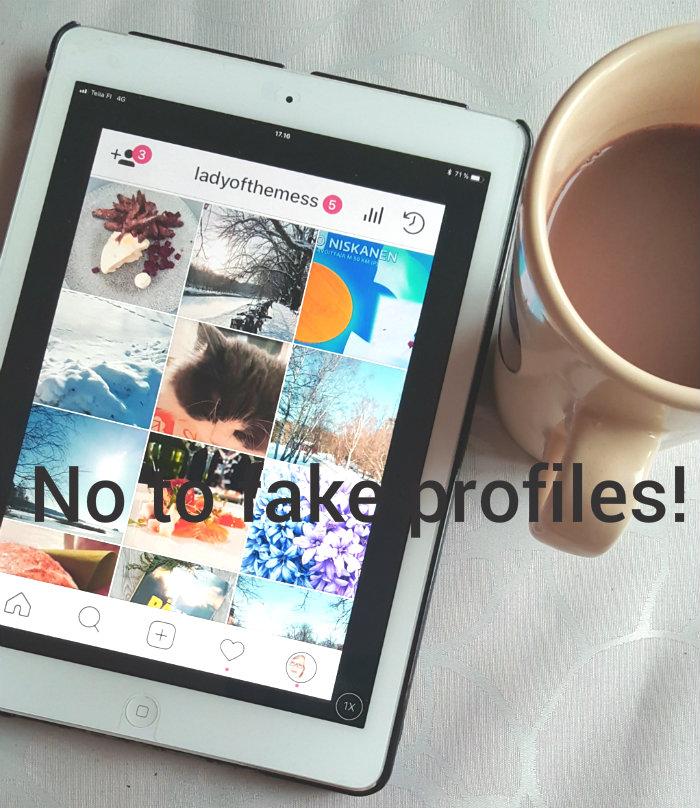 ladyofthemess on instagram - no to fake profiles