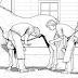 [revisão] ASPECTOS DA REPRODUÇÃO EQUINA: INSEMINAÇÃO ARTIFICIAL E TRANFERÊNCIA DE EMBRIÃO .pdf