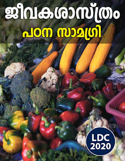 Download Study Material on Vitamins