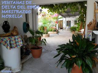 http://misqueridasventanas.blogspot.com.es/2017/06/ventanas-del-delta-del-ebro-y-el.html